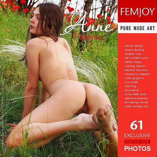 Anne - `Poppies` - by Goncharov for FEMJOY
