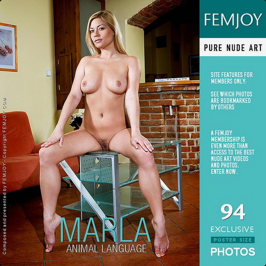 Marla - `Animal Language` - by Zorlen for FEMJOY