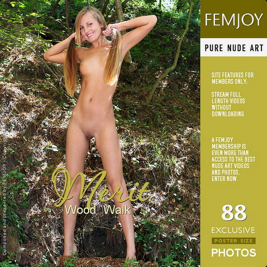 Merit - `Wood Walk` - by Valery Anzilov for FEMJOY