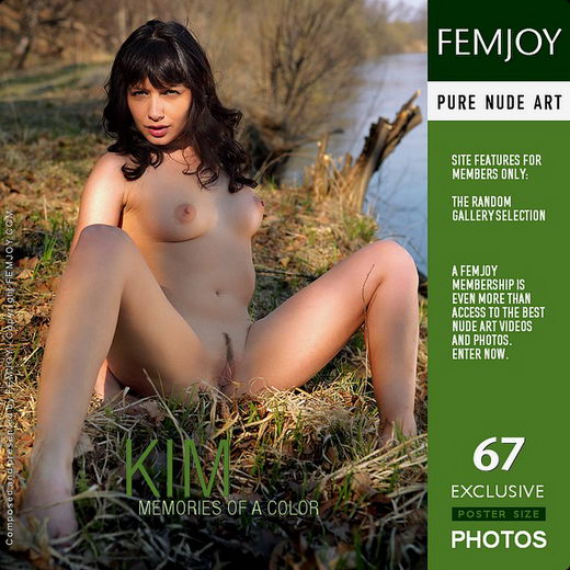 Kim - `Memories Of A Color` - by Tom Leonard for FEMJOY