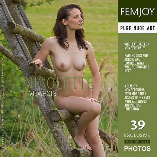 Nicolette - `Viewpoint - alternate cover` - by Stefan Soell for FEMJOY