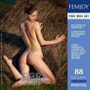 Fibby - Summer