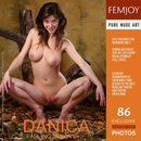 Danica in Falling In Love gallery from FEMJOY by Platonoff