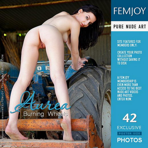 Aurea - `Burning Wheels` - by Tom Rodgers for FEMJOY