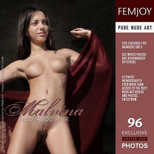 Malvina - `Wild About Me` - by Valery Anzilov for FEMJOY