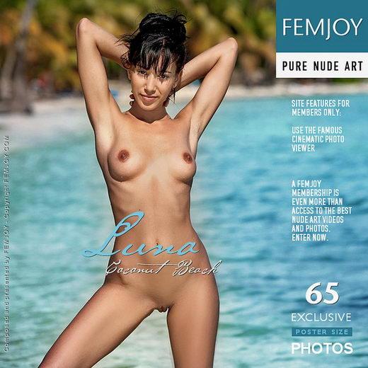 Luna - `Coconut Beach` - by Tom Rodgers for FEMJOY