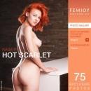 Hot Scarlet