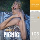Jane F in Picnic gallery from FEMJOY by Peter Olssen