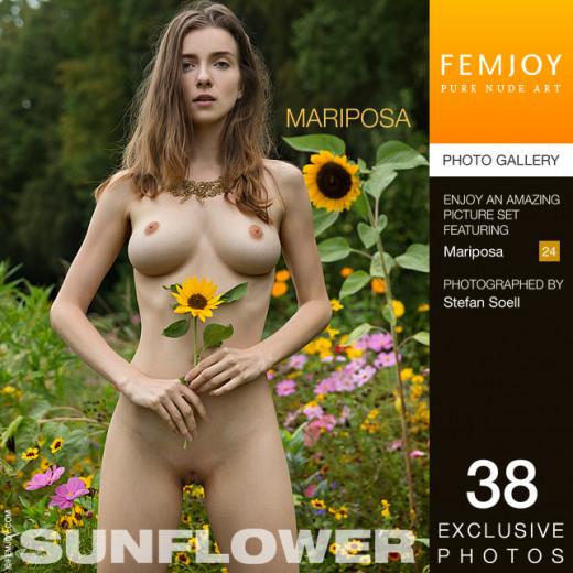 Mariposa - `Sunflower` - by Stefan Soell for FEMJOY