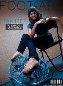 Fan Feet