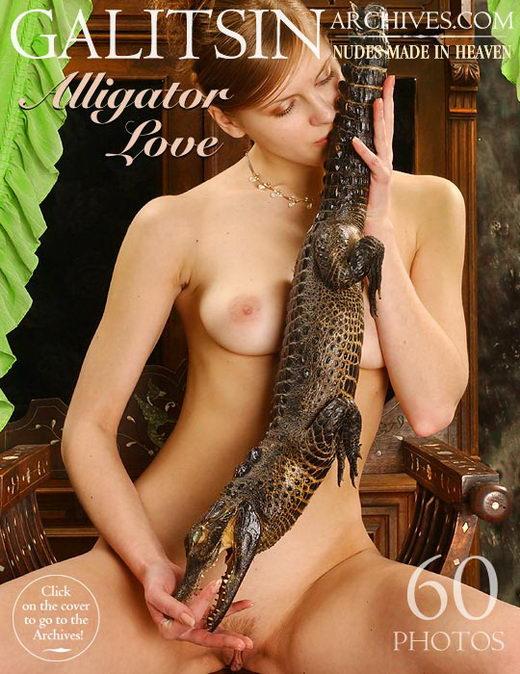 `Alligator Love` - by Galitsin for GALITSIN-ARCHIVES