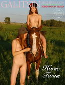 Horse Twins