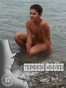 Tender Waves
