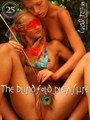 The Blindfold Pleasure