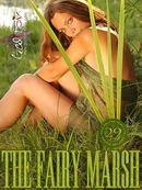 The Fairy Marsh