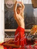 Perfect Julia