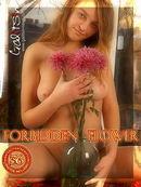 Forbidden Flower