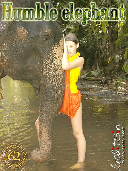 Valentina - `Humble Elephant` - by Galitsin for GALITSIN-NEWS