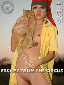 Escape From The Circus