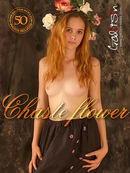 Chaste Flower