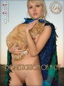 Liza - Domestication Of A Cat
