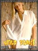 Alice - Wild Dance