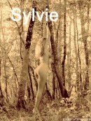 Sylvie - In The Woods