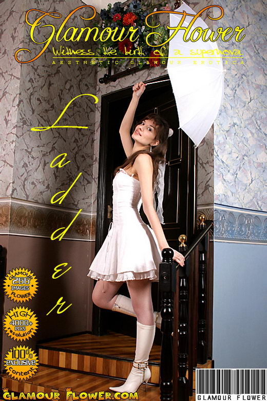 Jini - `Ladder` - for GLAMOURFLOWER ARCHIVES