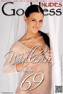 Walleria - Set 4