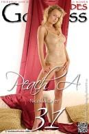 Peach A - Set 1