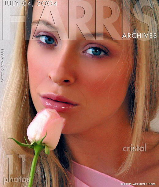 Cristal - `Pink Rose` - by Ron Harris for HARRIS-ARCHIVES