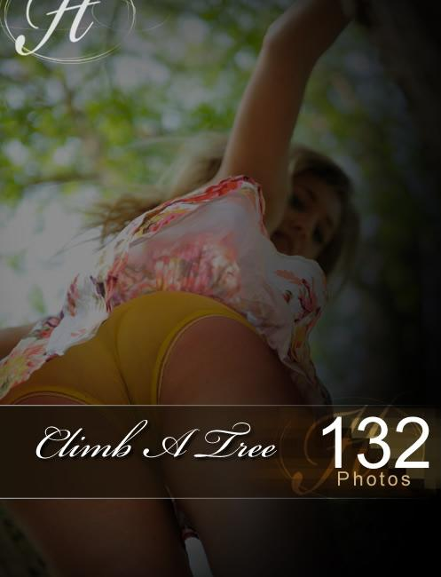 Hayley Marie - `Climb A Tree` - for HAYLEYS SECRETS