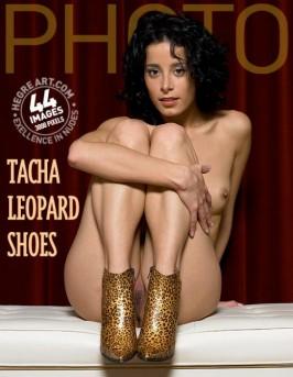 Tacha  from HEGRE-ARCHIVES