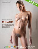 Silvie - #350 - Frozen Bush