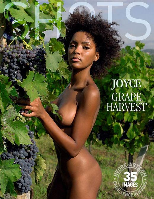 Joyce - `Grape Harvest` - by Petter Hegre for HEGRE-ART
