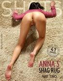 Shag Rug Part2