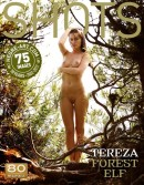 Tereza in Forest Elf gallery from HEGRE-ART by Petter Hegre