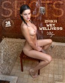 Zaika - Wet Wellness