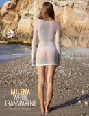 Milena - White Transparent
