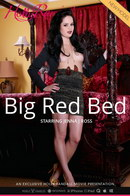 Big Red Bed