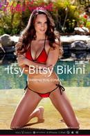 Itsy-Bitsy Bikini