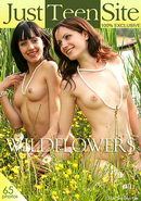 Anushka & Ludmila in Wildflowers gallery from JUSTTEENSITE by Victoria Sun