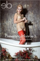 Presenting Monroe 3 gallery from LOVE HAIRY by Paramonov