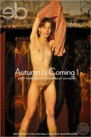 Emily Windsor in Autumn Is Coming 1 gallery from LOVE HAIRY by Jon Barry
