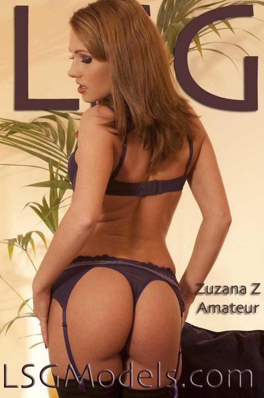 Zuzana Z - for LSGMODELS