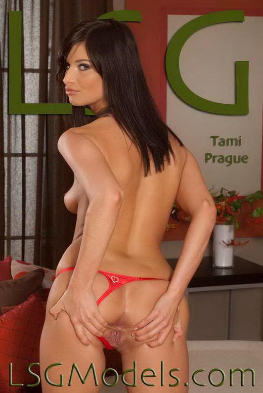 Tami - `Prague` - for LSGMODELS