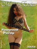Pinewood Pin-up