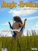 Hairy Spring