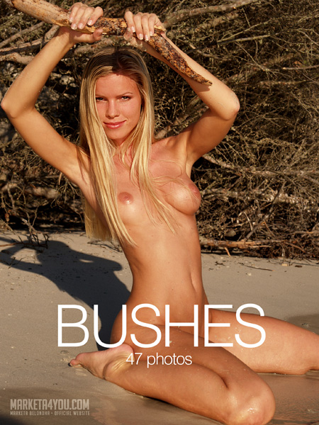 Marketa - `Bushes` - for MARKETA4YOU