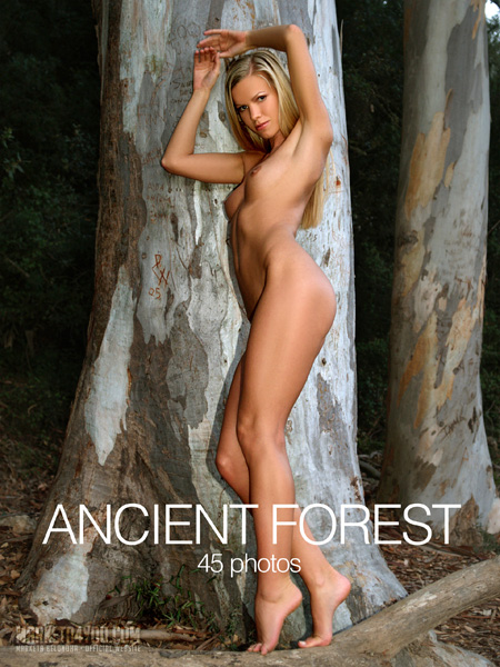 Marketa - `Ancient Forest` - for MARKETA4YOU